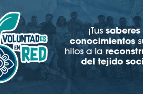 Voluntades en Red
